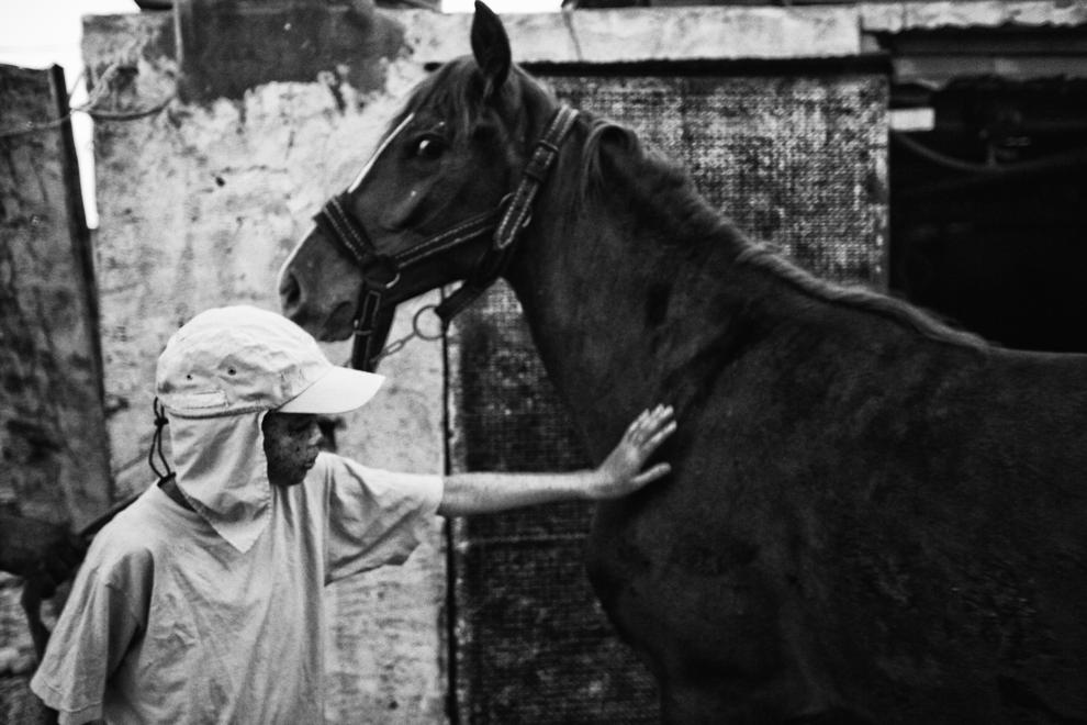 Zied Ben Romdhane ,10-Amani_(10)_strokes_her_horse_Khmisa_in_the_courtyard_of_her_house._She_has_a_special_relationship_with_her_horses