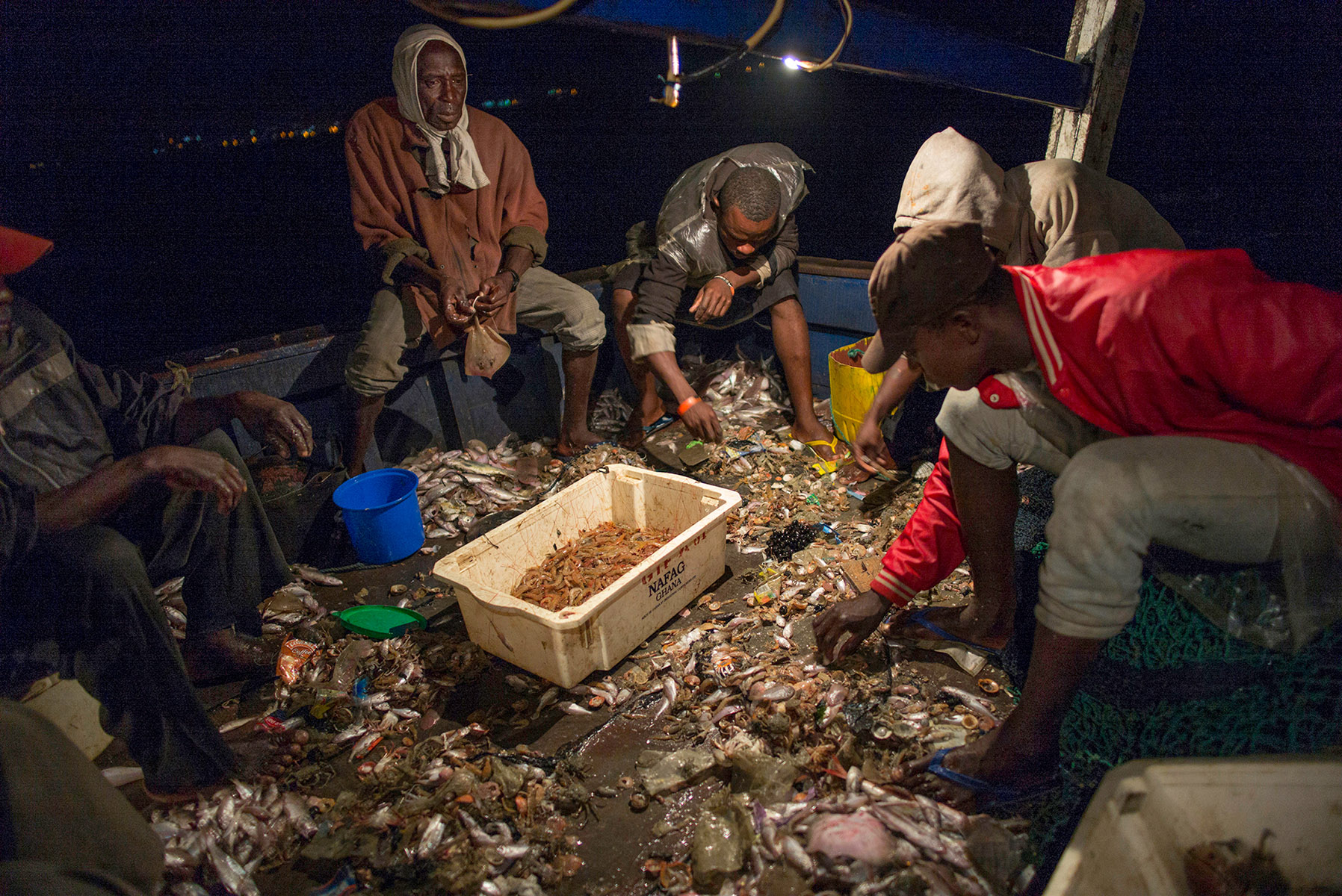Frank Day, Trawling for Shrimp, Syngenta Photo Award